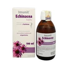 Imunity Echinacea